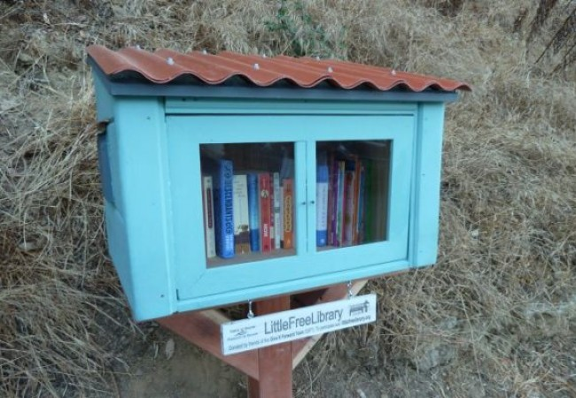 Little Free Library #264