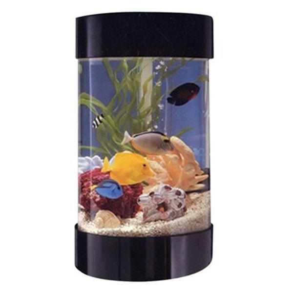 Aqua Scape Tabletop Aquarium