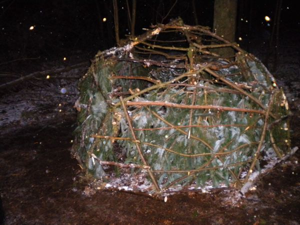 Geodesic dome out of natural tree branches by Kev Langan_3