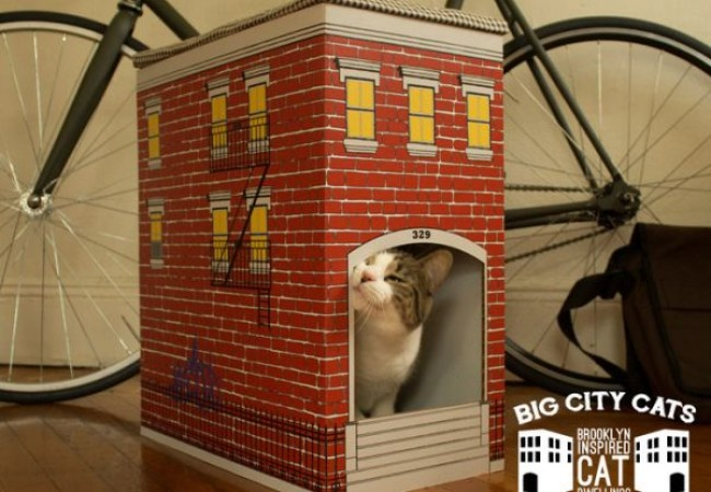 Brooklyn architecture inspired Cat Townhouse_1