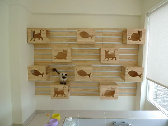 Cat Climbing Wall From Catswall Design