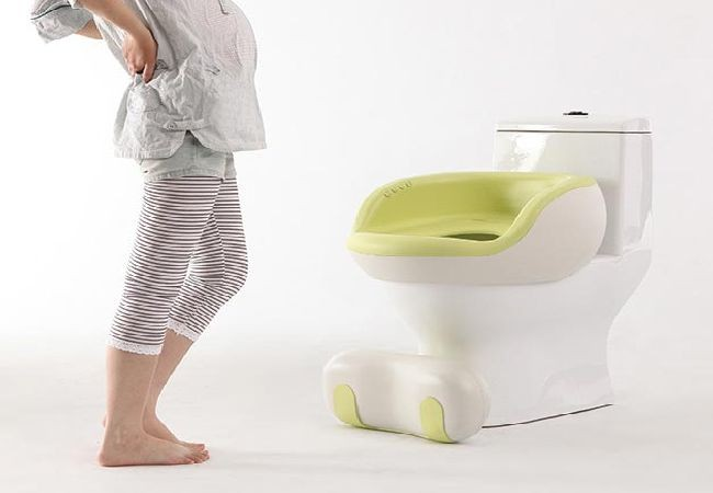 Corrola Washlet toilet system for pregnant women