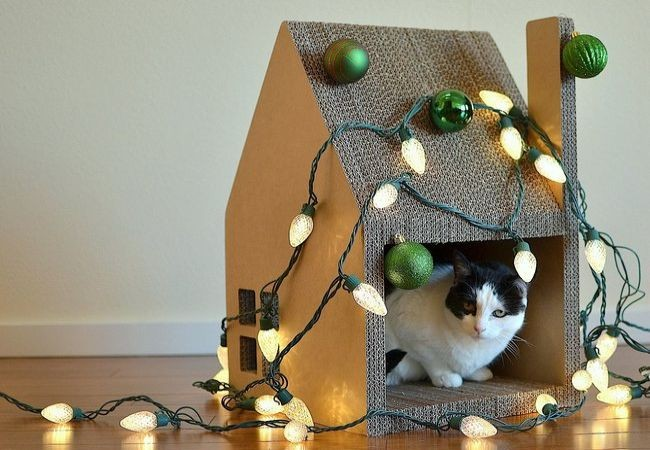 Krabhuis, the cardboard house for cats_6