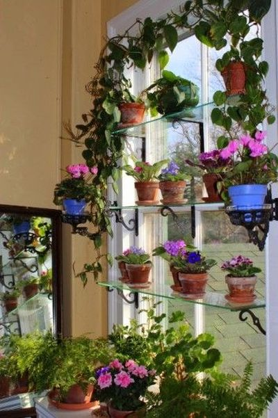 Give your kitchen window a garden style makeover_1
