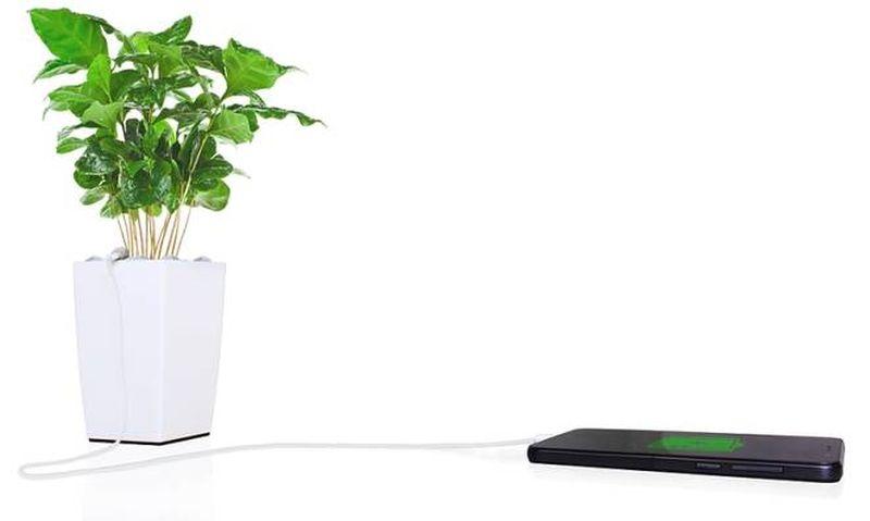 bioo lite plant pot-1
